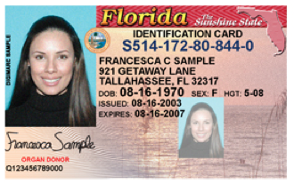 Sample license of Florida State Identification Card