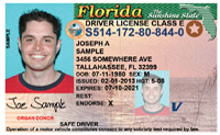 Florida Driver License Business Purpose only